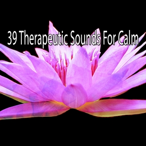39 Therapeutic Sounds For Calm | White Noise Therapy