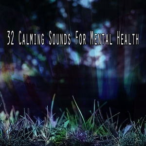 32 Calming Sounds For Mental Health | White Noise Meditation