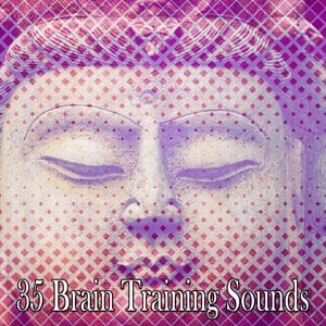 35 Brain Training Sounds | Exam Study Classical Music Orchestra