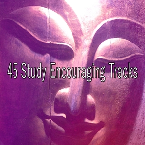45 Study Encouraging Tracks | Classical Study Music
