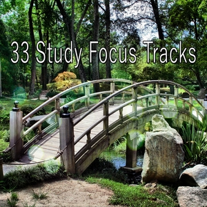 33 Study Focus Tracks | Brain Study Music Guys