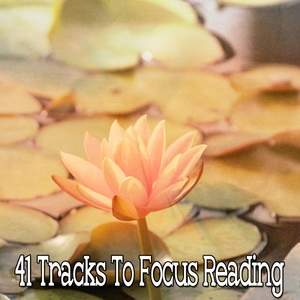 41 Tracks To Focus Reading | Music For Reading