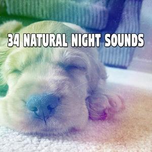 34 Natural Night Sounds | Musica para Dormir Dream House
