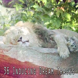 36 Inducing Dream Tracks | Musica para Dormir Dream House