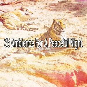 35 Ambience For A Peaceful Night | White Noise Babies