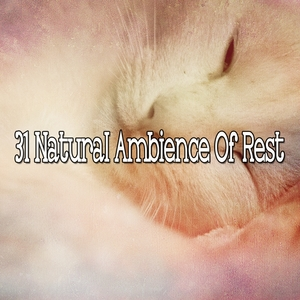 31 Natural Ambience Of Rest | White Noise For Baby Sleep