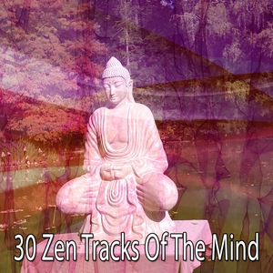 30 Zen Tracks Of The Mind | Zen Meditation and Natural White Noise and New Age Deep Massage