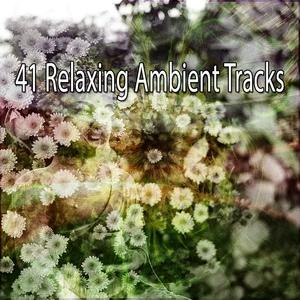 41 Relaxing Ambient Tracks   Musica Relajante