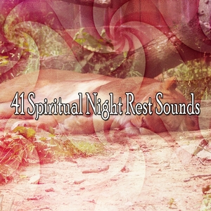 41 Spiritual Night Rest Sounds | White Noise Babies