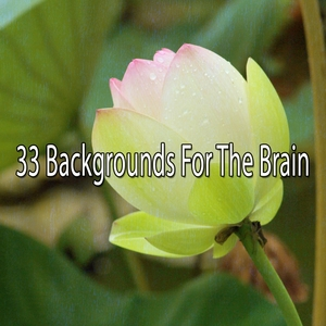 33 Backgrounds For The Brain | Brain Study Music Guys
