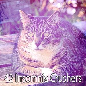 42 Insomnia Crushers | Dormir