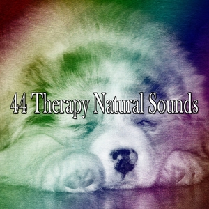 44 Therapy Natural Sounds | Spa Music Paradise