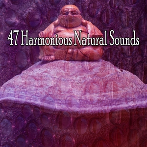47 Harmonious Natural Sounds | Forest Sounds