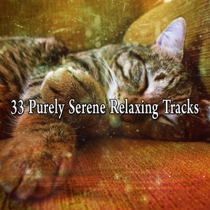 33 Purely Serene Relaxing Tracks | White Noise For Baby Sleep