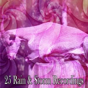 25 Rain & Storm Recordings | The Rain Library