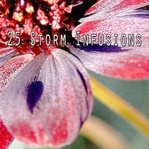 25 Storm Infusions | Thunderstorms