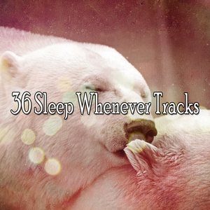 36 Sleep Whenever Tracks | White Noise For Baby Sleep