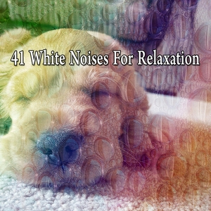 41 White Noises For Relaxation | White Noise For Baby Sleep