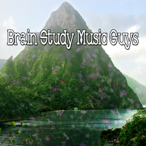 49 Auras For A Strong Study | Brain Study Music Guys