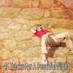 45 Tracks For A Peaceful Night | Dormir