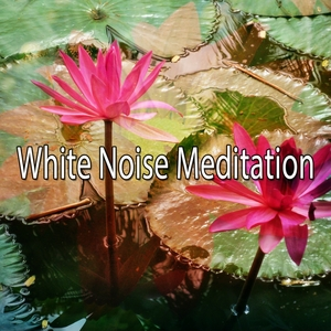 32 Auras For Therapy   White Noise Meditation
