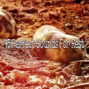 45 Perfect Sounds For Rest | White Noise For Baby Sleep