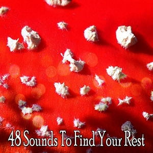 48 Sounds To Find Your Rest | Sounds of Nature