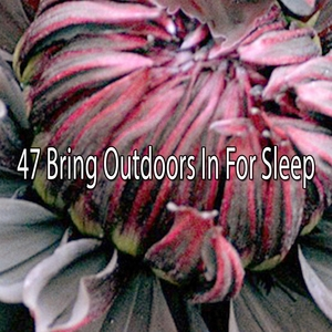47 Bring Outdoors In For Sleep | White Noise For Baby Sleep