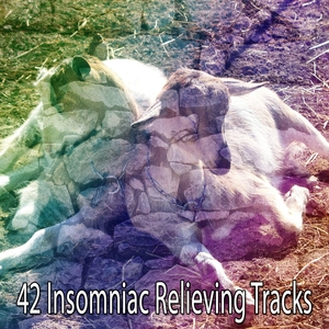 42 Insomniac Relieving Tracks | White Noise Babies