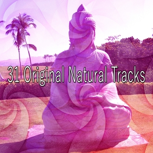31 Original Natural Tracks | Classical Study Music