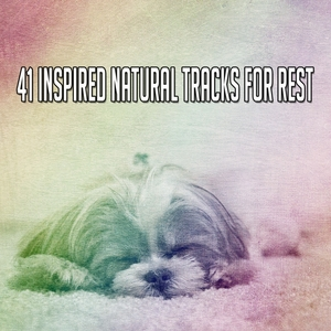 41 Inspired Natural Tracks For Rest | White Noise For Baby Sleep