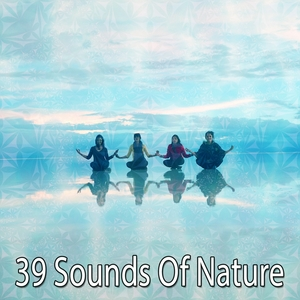 39 Sounds Of Nature | Forest Sounds