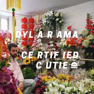 Certified Cutie | Dylarama
