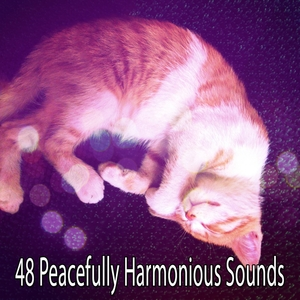 48 Peacefully Harmonious Sounds | Musica para Dormir Dream House