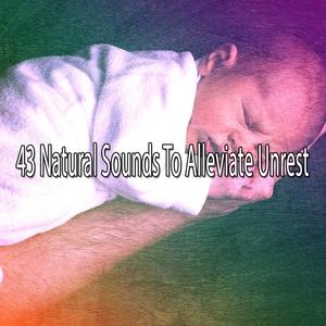 43 Natural Sounds To Alleviate Unrest | Musica para Dormir Dream House