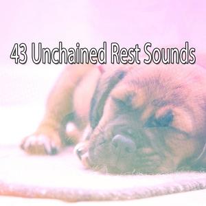43 Unchained Rest Sounds | Musica para Dormir Dream House
