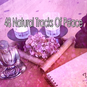 48 Natural Tracks Of Peace | Zen Meditation and Natural White Noise and New Age Deep Massage