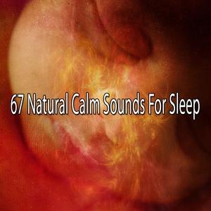 67 Natural Calm Sounds For Sleep   Musica para Dormir Dream House