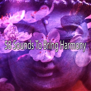 58 Sounds To Bring Harmony | White Noise Meditation