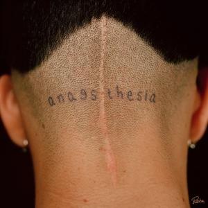 Anaesthesia   Katuchat
