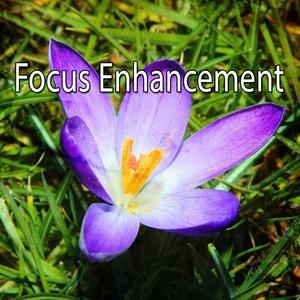 Focus Enhancement   Focus Study Music Academy