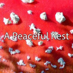 A Peaceful Rest | Musica para Dormir Dream House