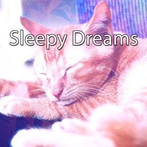 Sleepy Dreams | Musica para Dormir Dream House