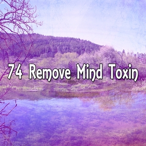 74 Remove Mind Toxin | Focus Study Music Academy