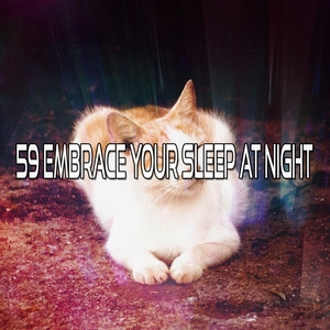 59 Embrace Your Sleep At Night   Musica para Dormir Dream House