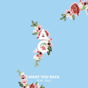 Want You Back | Antoine Chambe