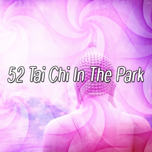 52 Tai Chi In The Park   Focus Study Music Academy