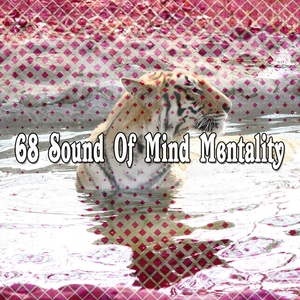 68 Sound Of Mind Mentality | Zen Meditation and Natural White Noise and New Age Deep Massage