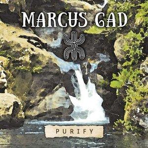 Purify | Marcus Gad