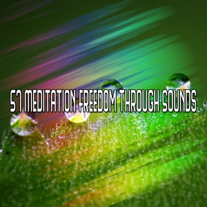 57 Meditation Freedom Through Sounds   Focus Study Music Academy